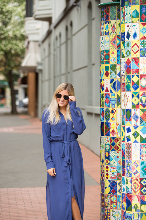 STILLWATER The Darian Shirt Dress Azure 5