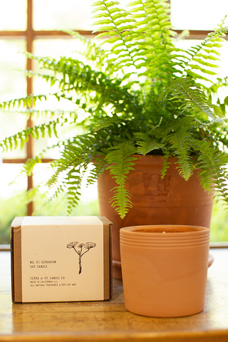 P.F Candle Co. Geranium Terracotta Candle